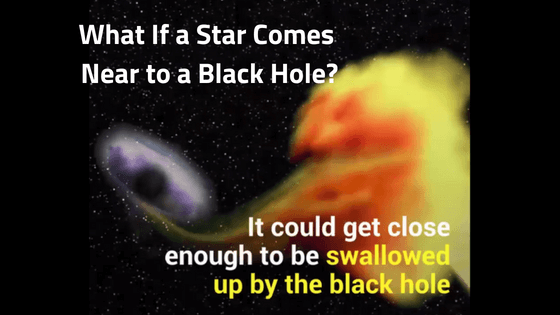 Black Hole and Star